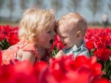 Dit zijn de 10 mooiste tulpenfoto's uit Flevoland