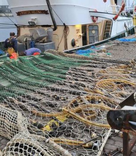 Aanlandplicht gaf pulsvissers een kans