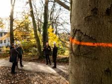 Uitdunning Park Klarenbeek in Arnhem kan verder gaan
