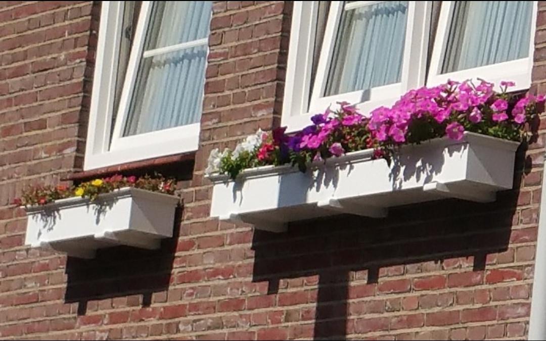 Armhoef aan de plantenbakken: er komen er negentig te hangen.