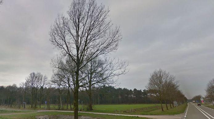 De locatie die de Actiegroep Zuna op het oog heeft voor het zonnepark in de Wierdense buurtschap, ligt achter deze houtwallen aan de Fuutweg tussen de Boersingel en de Notterveldsweg.
