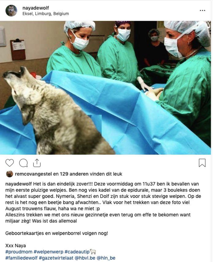Hilarisch: Naya de Wolf vertelt over haar 'bevalling' op Instagram.