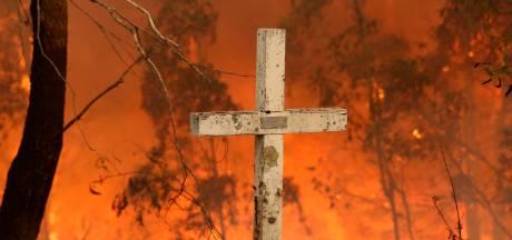 Tiener (16) opgepakt voor aansteken bosbrand in Australië die 14 woningen in de as legde