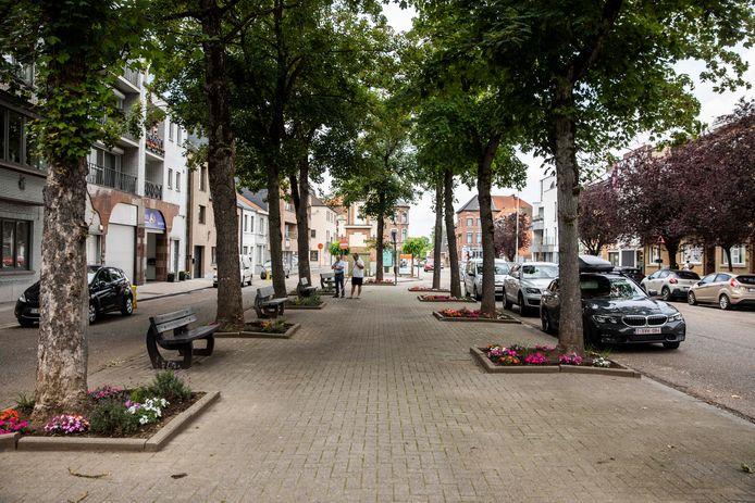 Het pleintje op de Naamsevest in Sint-Truiden is sinds mei volledig tot leven gekomen.