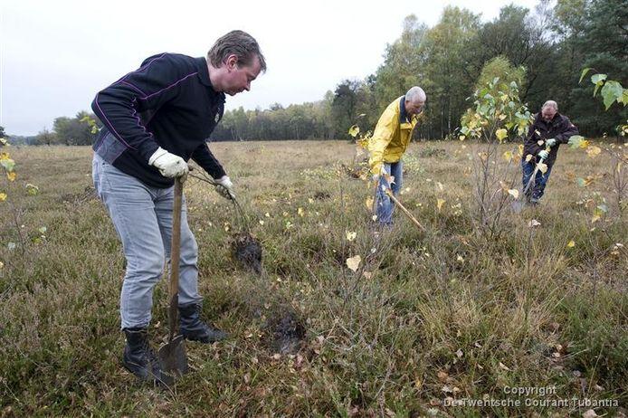Marco Boekelder uit Zieuwent, Tonnie Klein Breteler en Co Brader uit Neede zijn drie van de zeventig vrijwilligers die de natte heide van het Needse Achterveld ontdoen van berkenbomen.