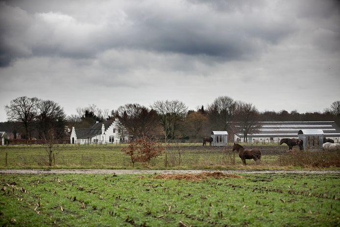 De akkergronden op het perceel aan Achtereindsestraat in Waalre worden omgetoverd tot een landgoed met nieuwe natuur en wandelgelegenheid voor inwoners. In ruil mag de eigenaar twee villa's bouwen op de grond.
