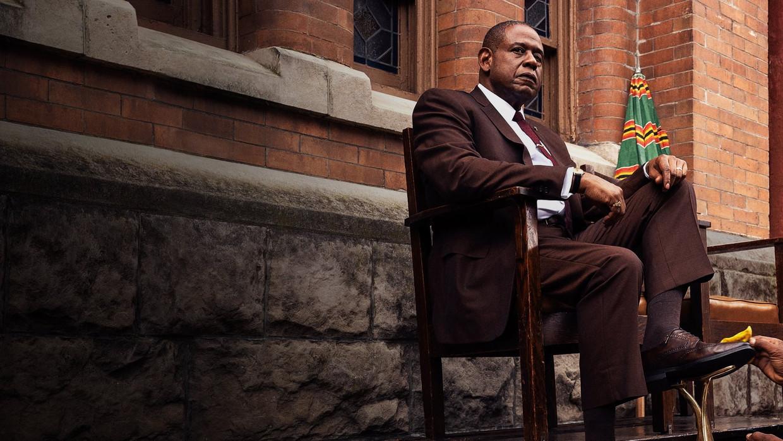 'Godfather of Harlem' Beeld -