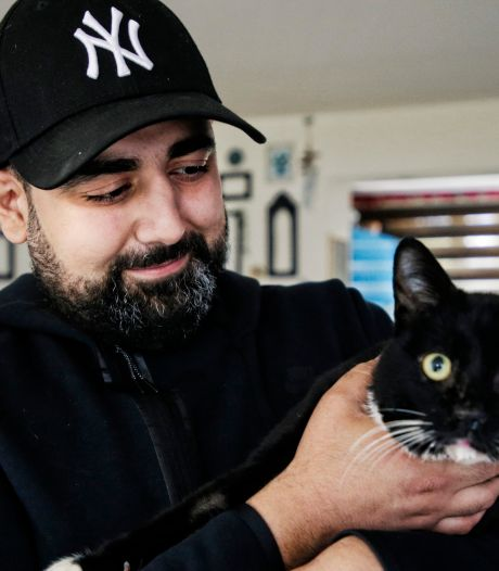 Baasjes vol ongeloof om mishandelde Shaggy: 'Als je dit een kat aandoet, waar ben je dan toe in staat?'