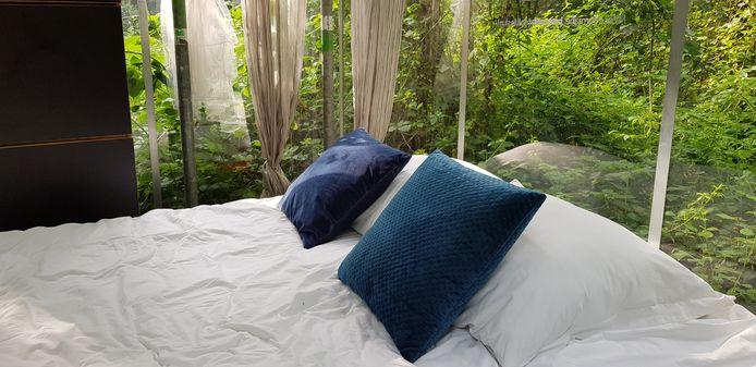 Lekker slapen in de 'bushbush' van Het Groene Woud.