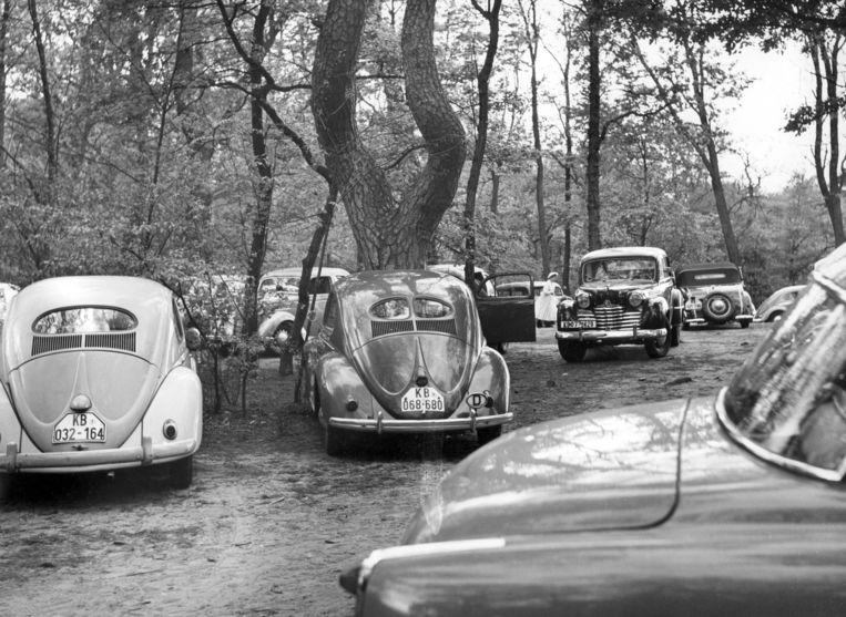 Auto's bij een recreatiegebied in West-Berlijn in de jaren vijftig. Beeld Hollandse Hoogte / Sueddeutsche Zeitung