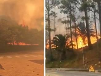 De Tafelberg in Zuid-Afrika staat in brand