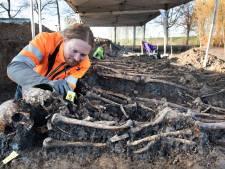 Al 81 skeletten gevonden in mysterieus massagraf Vianen: Britse superonderzoekers schieten te hulp