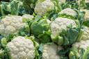 Bloemkool is een van de populairste groenten in Nederland.