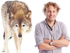 Een buizerd of wolf gevaarlijk noemen? Foei, roept de natuurtermenpolitie
