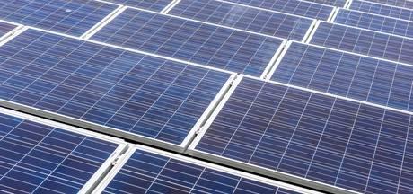 Kalfsvellenbedrijf legt 1.578 zonnepanelen op zijn dak