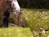 Om deze reden mag je in mei even lui zijn en het gras laten groeien
