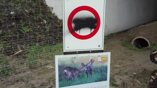 """Week na opening al vandalisme aan ecotunnel  in Marke (maar eigenlijk ook voordien al): """"Mogelijk gaan we een camera installeren"""""""