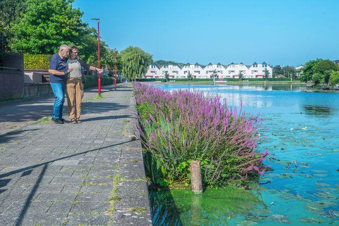 Hans en Gonda Rog genieten van de natuurvriendelijke oevers bij de Broekwegwetering.