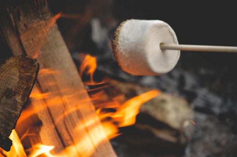 Lekker marshmellows roosteren kan dit weekend op het Winter Wonder Jeugdland. Beeld Shutterstock