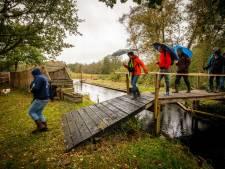 De Kooi van Pen: regenachtig, maar een kniesoor die erover zeurt