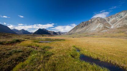 Overheid VS geeft groen licht voor olieboringen in beschermd natuurgebied
