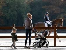 Niet alleen topsport op Hippisch Centrum in Deurne, ook paardentherapie en dagbesteding