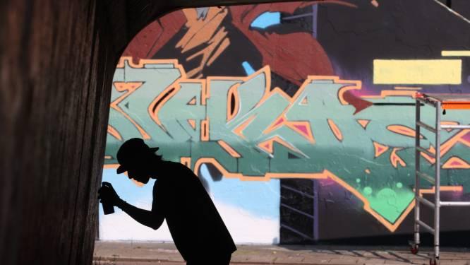 Complete metamorfose voor graffiti hall of fame, Berenkuil weer domein van Step in the Arena