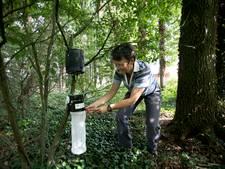 Muggen laten het afweten in Borkel en Schaft