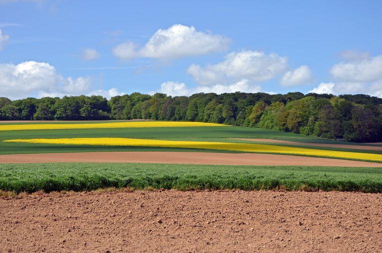 Het zacht glooiende landschap van Picardië. Beeld wikimedia