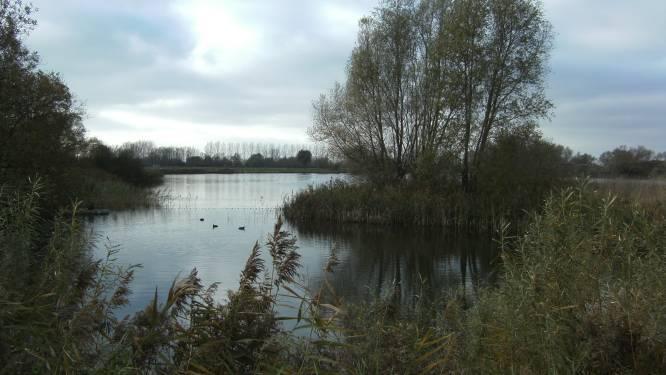 Meningen verdeeld over toekomst Put Nieuwkapelle: extra windmolens of recreatiegebied?
