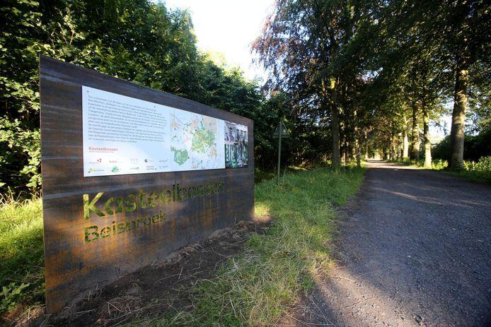 In het stadsdomein Beisbroek wordt al jaren aan watergewinning gedaan, maar dat heeft geen gunstig effect op het bomenbestand.
