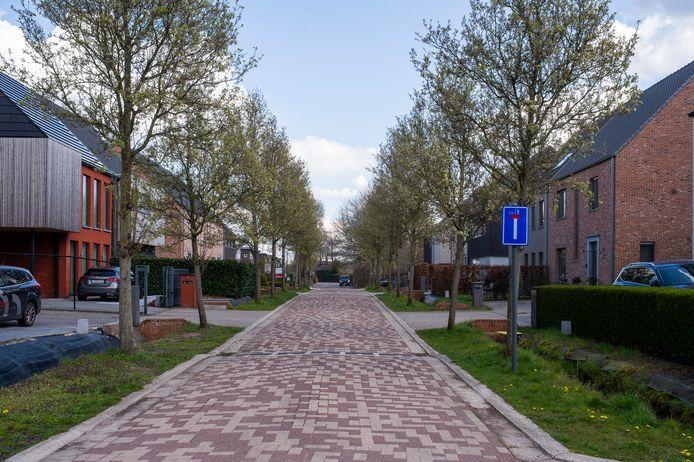 In de recent ontwikkelde wijk tussen de Sint-Jobbaan en de Heidemolenbaan in Westmalle wonen vooral jonge gezinnen met kinderen