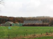 Wethouder Marchal en LTO willen boer in verpieterende Wijkse boerderij