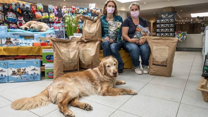 """Vlaamse dierenwinkel zamelt voeding in voor getroffen huisdieren door overstromingen: """"De beestjes worden altijd vergeten bij natuurrampen"""""""