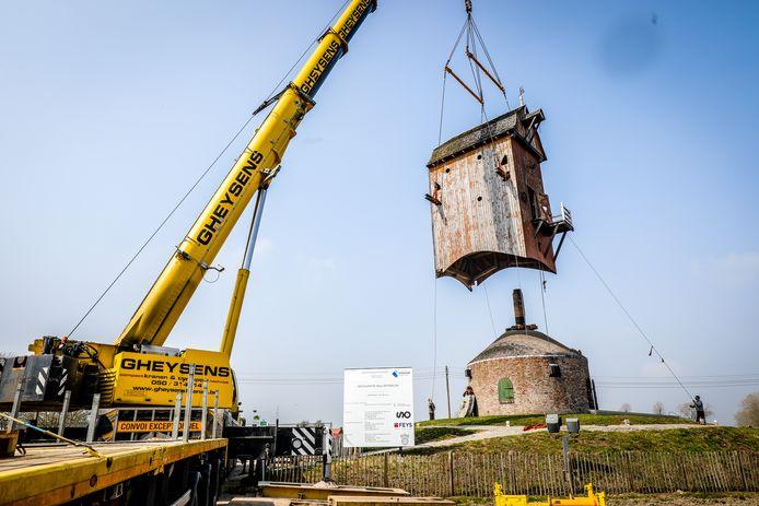 De Wullepitmolen uit Zarren wordt op transport gezet om de schade van klopkevers te restaureren