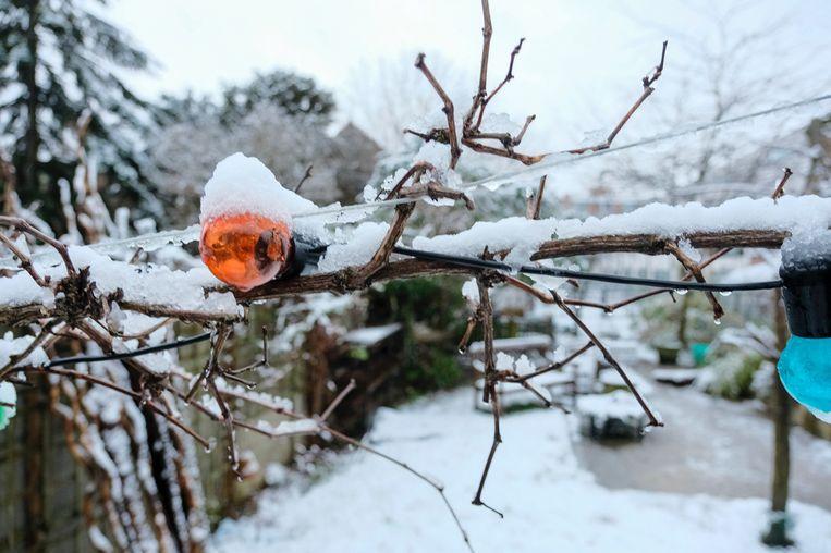 Ook in Leuven mooie beelden dankzij de eerste sneeuw.