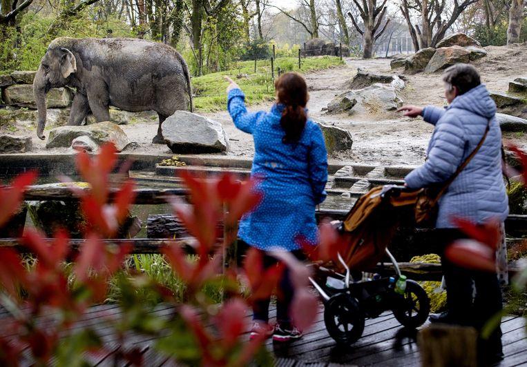 Onder andere dierentuinen, attractieparken en openluchtmusea kunnen bij stap 2 van het versoepelplan weer open. Beeld ANP