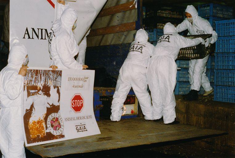 Juni 1992. De allereerste Gaia-actie: de inval in kippenslachterij Belki. Beeld rv