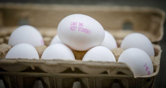 Parti de Belgique, le scandale des œufs contaminés au fipronil avait touché tous les pays de l'UE sauf la Croatie, la Lituanie et le Portugal.