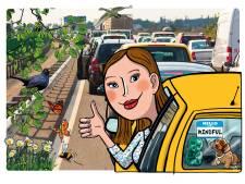 Minder stress in het verkeer: 'Realiseer je dat niemand perfect rijdt, ook jij niet'