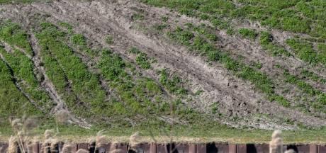 Hof van Twente is motorcrossers zat: 'Ze verstoren het wild en rijden de natuur kapot'