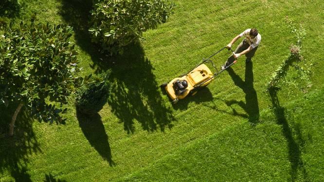 Tijd om de wildernis in je tuin aan te pakken: zo kies je een nieuwe grasmaaier