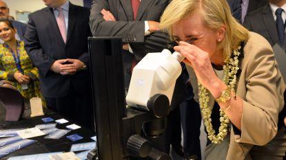 Strengere regels voor diamantairs moeten fraude en witwas tegengaan