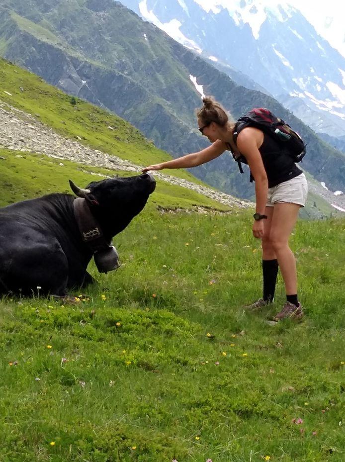 Onze dochter doet aan 'koetjes strelen' in de Alpen.
