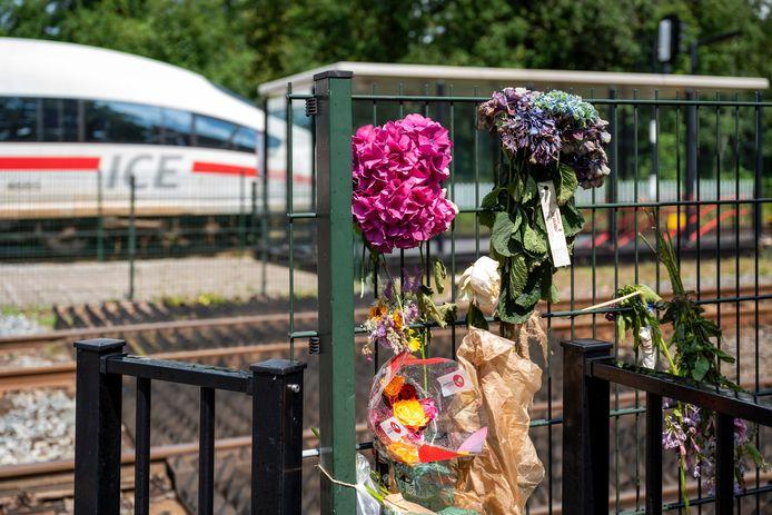 Op de spoorwegovergang in Wolfheze heeft vrijdag een dodelijk ongeval plaatsgevonden.