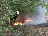 Natuurbrand woedt in de bossen bij Molenschot
