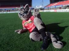 Nieuwe look voor Helmond Sport-mascotte Loewy the Cat