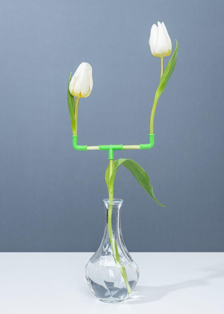null Beeld PUTPUT/Galerie Esther Woerdehoff