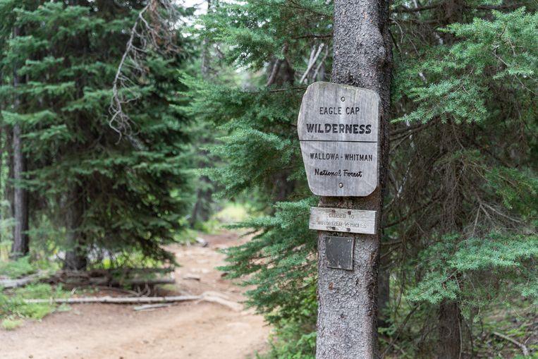 Het wandelpad naar de Minam River Lodge, die op 14 kilometer van de parkeerplaats ligt.  Beeld Jonathan Vandevoorde