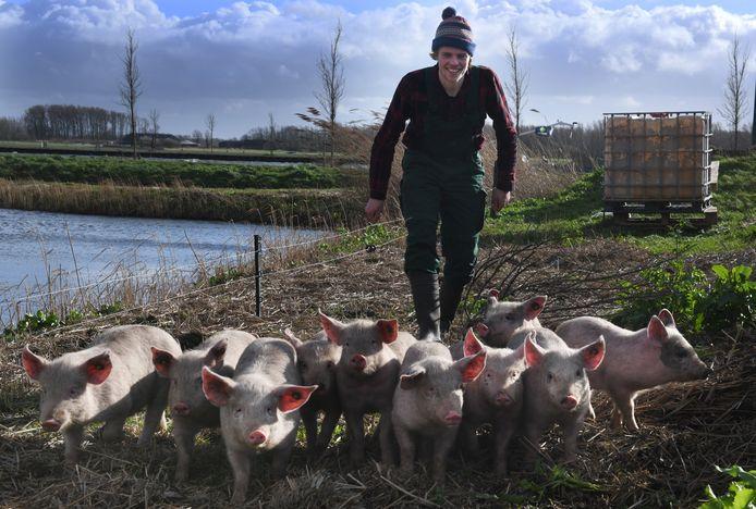 'Varkensherder' Josse Haarhuis uit De Bilt laat zijn dieren op verschillende locaties in Nederland wroeten.